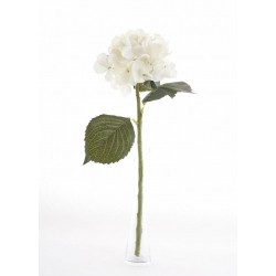 Hortensia Créme 48cm