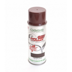 EASY COLOR - Bombe Chocolat Foncé OASIS 400 ml