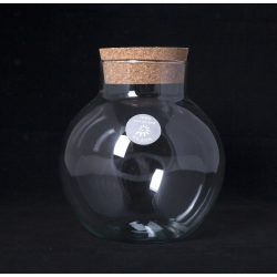 TERRA - Vase Bouteille Terrarium + Bouchon D19 x H25 cm