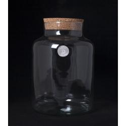 TERRA - Vase Baratte Terrarium + Bouchon D21 x H29 cm