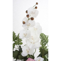 Bouquet Vertical Orchidée Rose Beauty H45cm