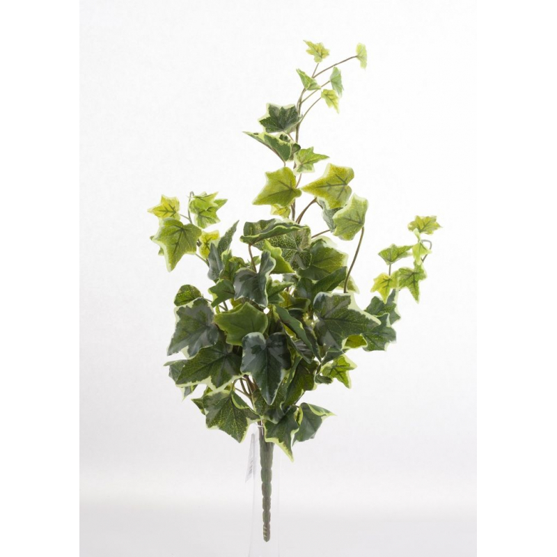 Branche de Lierre Varié 78 feuilles
