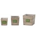 JARD - Cube Bois Vert L13/16/19 x H12/15/18 cm set de 3