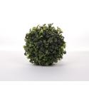 BUIS - Boule Buis D13 cm vert