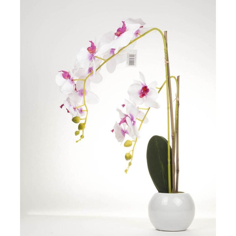 ORCHI - Orchidée H66 cm et pot en céramique par 2