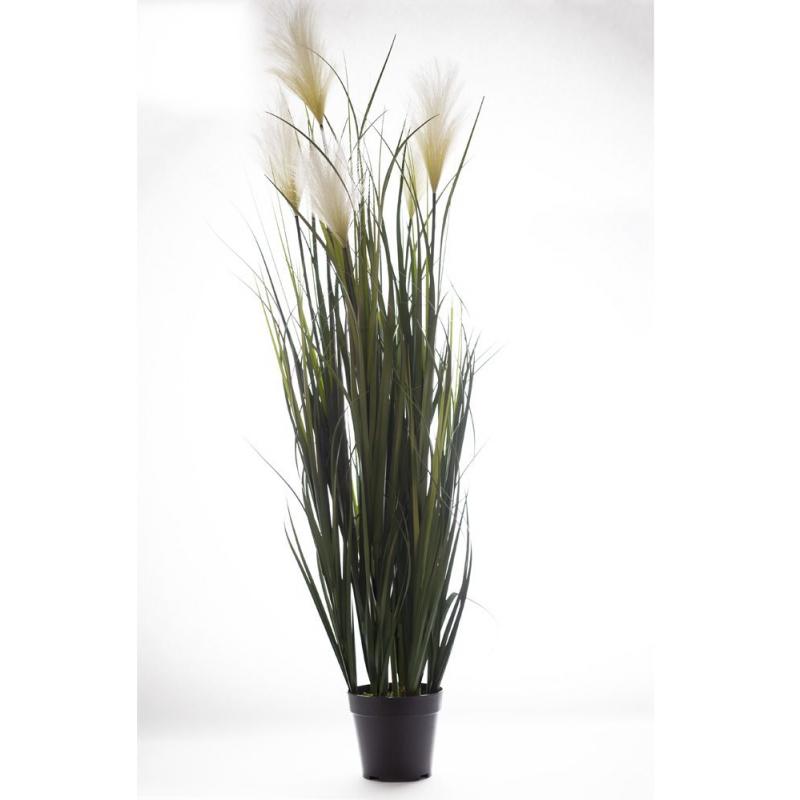 GRASS - Herbe Pampa et pot plastique H125 cm vert/blanc