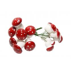 Champignons assortiment Rouge et blanc Par 17