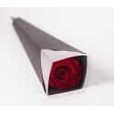 ROSA - Rose Stabilisée Rouge sur tige D8 x H50 cm