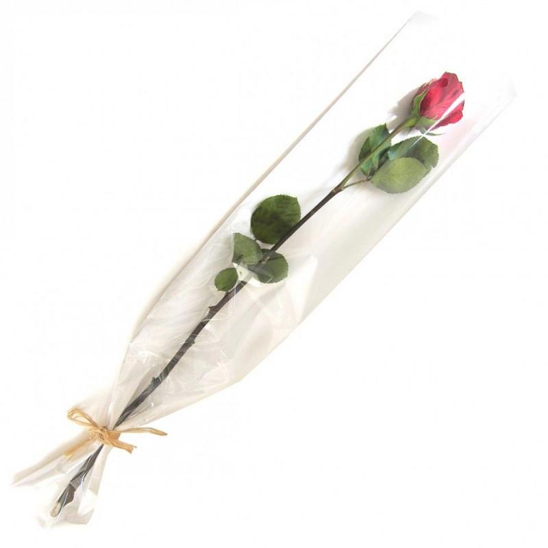 Etuis Rose Blanc 16x80cm par 50