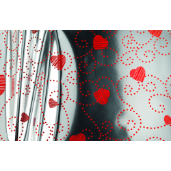 X AMORE - Étuis à Rose Argent L16 x H100 cm par 100