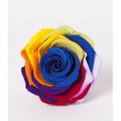 ROSA - Tête Rose Stabilisée D6.5cm Rainbow par 6