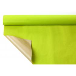 PIENO - Papier Kraft Vert pomme 0.80 x 40 m
