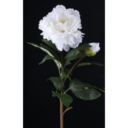 BRANCH - Pivoine 1 Fleur H90 cm Blanc