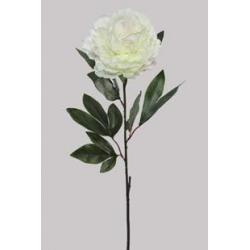 Pivoine Blanche H78 cm