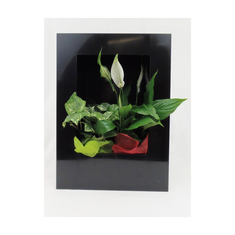 Cadre Végétal Noir 25 x 35 cm