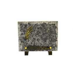 Plaque rectangulaire Granit + inter Or Ass. L15 x H20 cm par 8