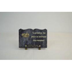 Plaque livre gravée Granit + inter Or Ass. L17 x H25 cm par 6