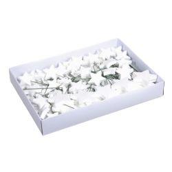 ETOILE - Piques étoiles scintillantes Plastique Blanc D4/5/7 cm par 1