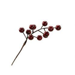 Piques Berry Plastique H15 cm par 24