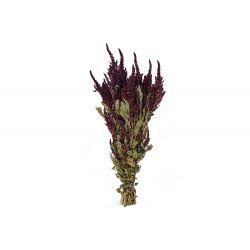 AMA - Bouquet Amaranthus séché Rouge