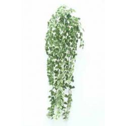 Chûte de Pothos 600 feuilles Vert H90 cm
