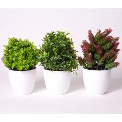 TREE - Arbustes plastiques avec pot Vert/Rouge H18 cm par 3