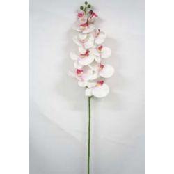 Fleur sur tige Orchidée 10 fleurs Blanc/Mauve H105 cm