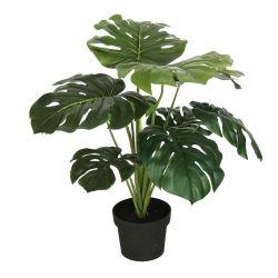 Plante Monstrera 10 feuilles Vert + Pot plastique H65 cm