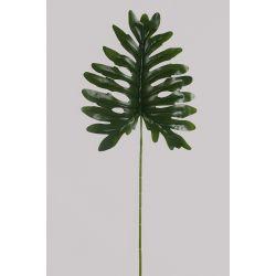 Feuille de Philo Vert L100 cm