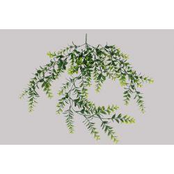 Chûte de Buis Vert L84 cm