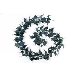 Guirlande de Lierre Anglais 118 feuilles Vert L270 cm