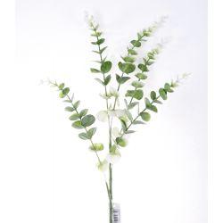 Eucalyptus  Crème/Vert H75cm x 5