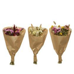 Bouquets de fleurs sechées ass. D15 x H35 cm par 3