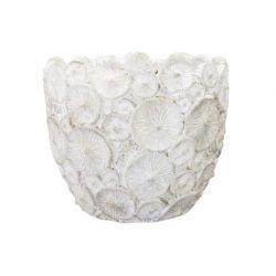 SHELL - Cache-pot Ciment Blanc D11,5 x H10,5 cm par 4