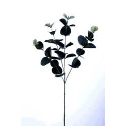 BRANCH - Eucalyptus H65 cm...