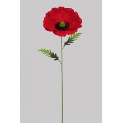 Coquelicot Rouge D28 x H102 cm