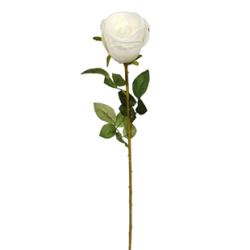 Bouton de Rose 9 feuilles...