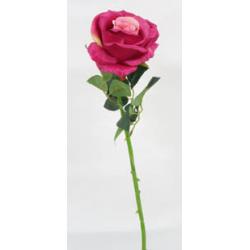 Fleur sur tige Rose Fuchsia...