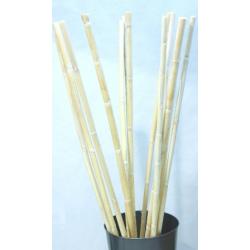 Bambou Canne 100 cm Blanc par 13