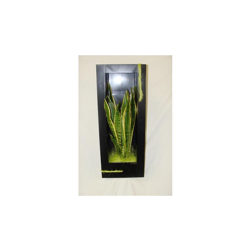 Cadre Végétal Noir 74x29 cm