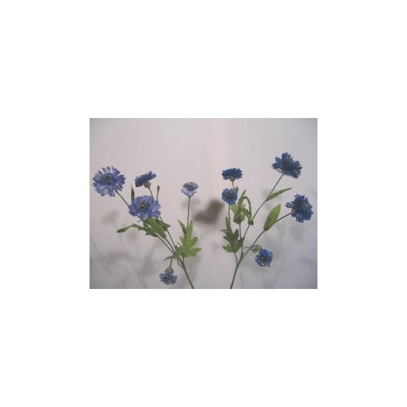Bleuet 5 fleurons Bleu