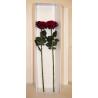 Boîtes à Roses 80+10x20cm par5