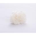 ELIAS - Chrysanthème Stabilisé Blanc par 4