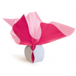 Bulle Box Médium 9x12 cm Fuchsia/Rose par 10
