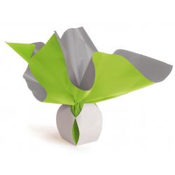 Bulle Box Médium 9x12 cm Vert/Gris par 10