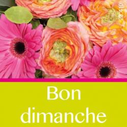 BON DIMANCHE - Etiquettes Jeso